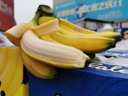 【半岛商城】南美香蕉4斤装/8斤装 自然熟健康蕉 味道浓郁 醇厚 感绵密香甜 商品图2