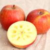 积分兑换丨香甜脆爽的新疆阿克苏冰糖心苹果  汁多皮薄 肉厚核小  3斤/5斤/9斤装 商品缩略图2