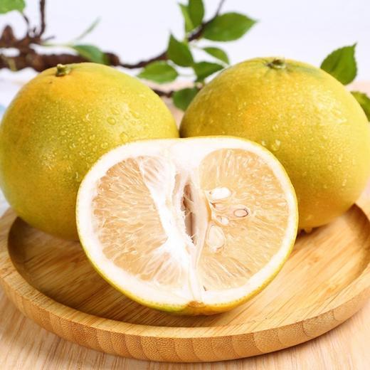 【半岛商城】台湾葡萄柚 7-9枚约9斤 几乎纯甜,略带一丢丢果酸 商品图0