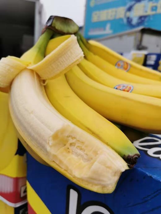 【半岛商城】南美香蕉4斤装/8斤装 自然熟健康蕉 味道浓郁 醇厚 感绵密香甜 商品图3