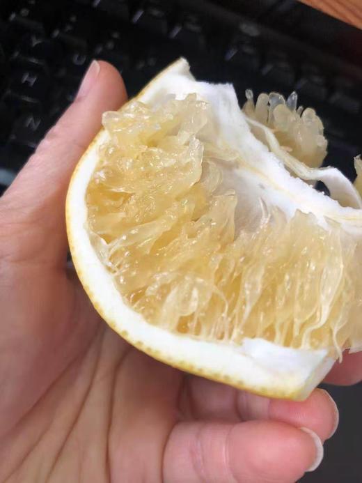 【半岛商城】台湾葡萄柚 7-9枚约9斤 几乎纯甜,略带一丢丢果酸 商品图3
