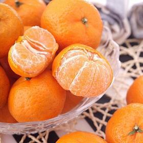 江西南丰蜜桔  甜小贡桔 当季新鲜水果  甜蜜多汁  产地直供