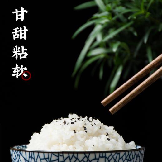龙米家五常大米稻花香2号东北大米罐装长粒香米礼盒 商品图3