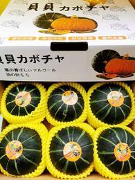 【半岛商城】贝贝小南瓜6枚 约4-4.5斤 又香甜又粉糯,美味至极