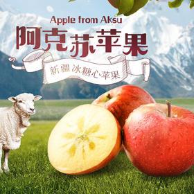 【新疆阿克苏冰糖心苹果】香甜脆爽 汁多皮薄 肉厚核小老 复购率高10斤/箱