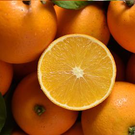 冰爽纯甜湖南麻阳冰糖橙 果肉水嫩 橙香浓郁 3/5/9斤装 | 基础商品