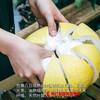 【全国包邮】云南西双版纳傣柚 (单果2-2.5斤)(72小时内发货) 商品缩略图2