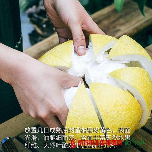 【全国包邮】云南西双版纳傣柚 (单果2-2.5斤)(72小时内发货) 商品图2