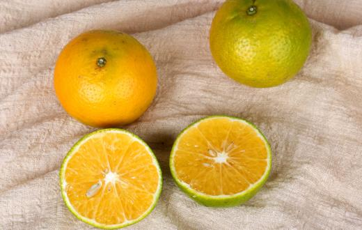 【新鲜到货】当季新鲜水果新鲜现摘皇帝柑5斤 商品图3