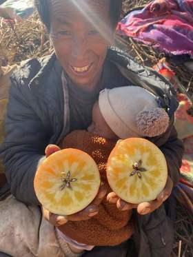 【最后一批!限量抢】助力凉山高海拔.冰雹苹果!25元5斤顺丰包邮