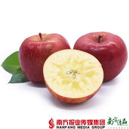【珠三角包邮】农匠 冰糖心红富士苹果  8.5-9斤/箱(1月16日到货)