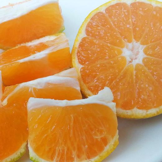 精选 | 庐山西海蜜桔  片片饱满 酸甜可口 5/10斤装  顺丰直发 商品图3