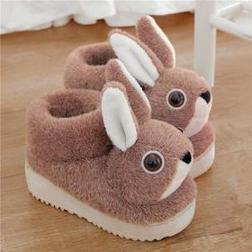 PDD-ASJJX201130冬季儿童居家可爱卡通兔包跟棉鞋TZF