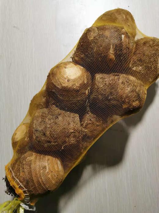 【半岛商城】荔浦芋头 预计12.3入仓 12.4发货 约9斤 商品图0