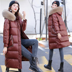 CQ-CPYY9095新款潮流时尚气质休闲大毛领连帽亮面长款棉服外套TZF