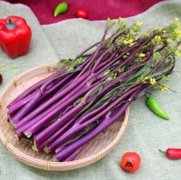 【时令蔬菜】新鲜红菜薹500g±20g