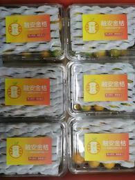 【半岛商城】 融安匠级金桔 500克 25-30枚/盒 蜂蜜甜小糖罐儿 金桔里的劳斯莱斯
