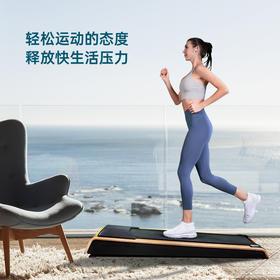 VAN梵品V1平板跑步机家用款小型走步机折叠走路机室内健身房专用静音