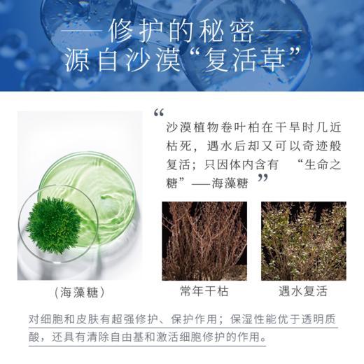愈创木安舒露修护敏感肌肤 商品图3