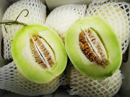 【半岛商城】白雪蜜瓜 2枚装 约6.2-6.4斤 一定要放一放再吃 糖度报表