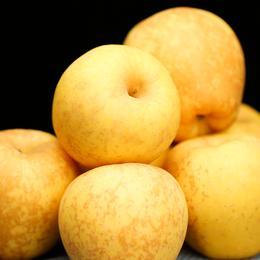 [维纳斯黄金苹果]金黄外表  口感脆爽 4.5斤礼盒装