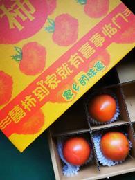 【半岛商城】囍柿 铁柿子 喜柿 2盒 约4斤(9枚/盒)