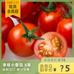 [串收小番茄]新鲜可口 果汁丰厚 6串/箱(共约1.2kg)