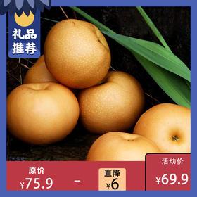 [ 秋月梨 ] 肉质脆嫩 香甜多汁  礼盒装/家庭装2种可选